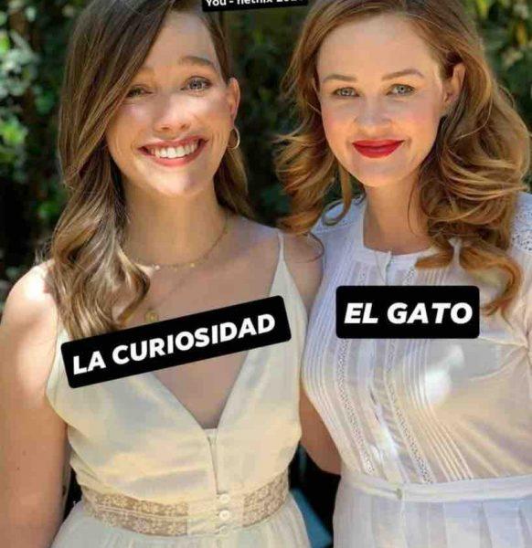 memes de you