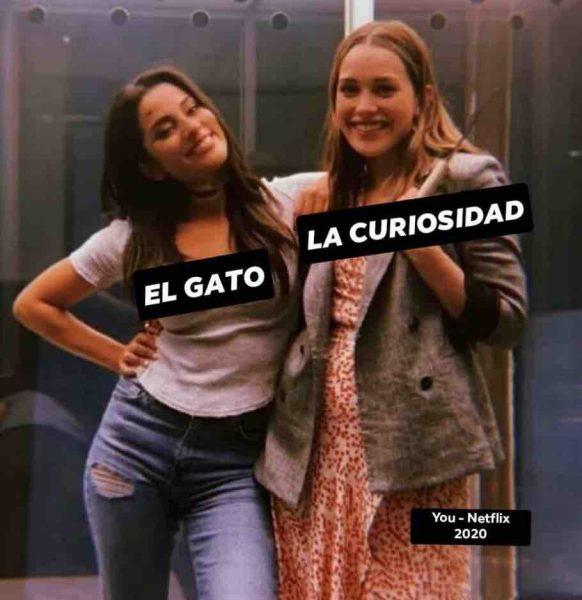 memes you love